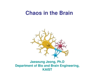 Chaos in the Brain