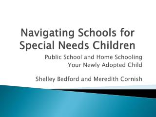 Navigating Schools for Special Needs Children