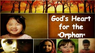 God's Heart  for the Orphan