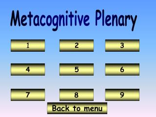 Metacognitive Plenary