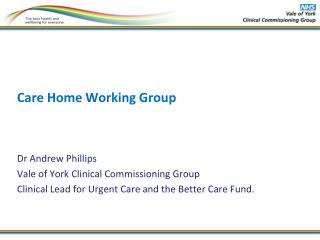 Care Home Working Group