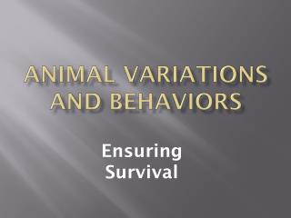 Animal Variations and Behaviors