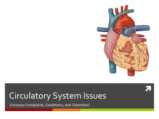 Circulatory System Issues