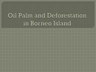 Oil Palm and Deforestation in Borneo Island