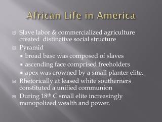 African Life in America