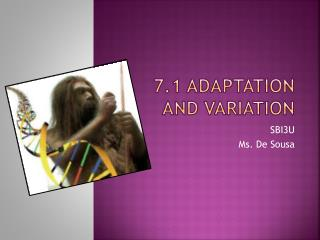 7.1 adaptation and variation