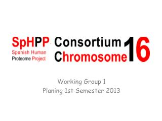Working Group 1 Planing  1st  Semester  2013