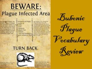 Bubonic Plague Vocabulary Review