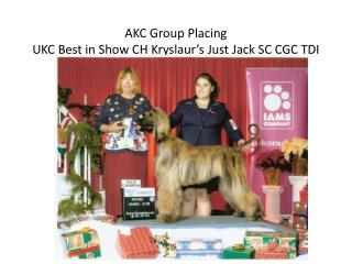 AKC Group Placing  UKC Best in Show CH  Kryslaur's  Just Jack SC CGC TDI