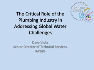 The Critical Role of the Plumbing Industry in Addressing Global Water Challenges