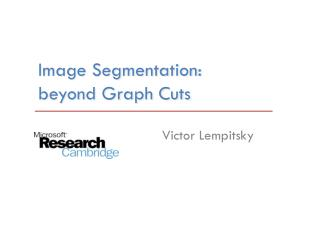 Image  Segmentation: beyond Graph Cuts