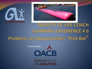"QUALITY OF LIFE COACH LEARNING EXPERIENCE # 6 Problems as Opportunities  ""Pink  Bat """