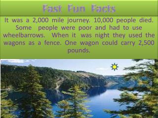 Fast Fun Facts