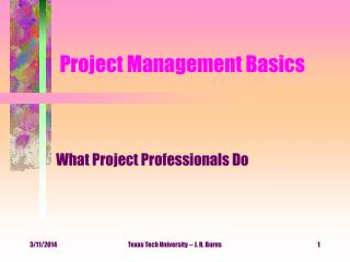 Project Management Basics