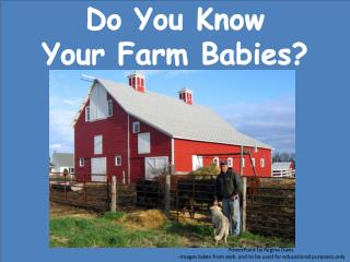 Do  You Know  Your Farm Babies?