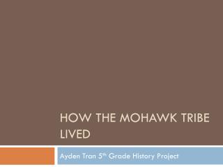 How the  mohawk  tribe lived