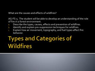 Types and Categories of Wildfires