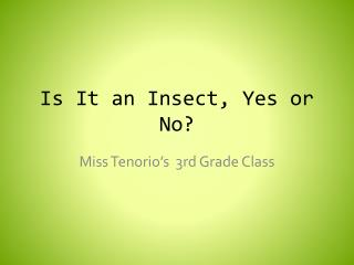Is It an Insect, Yes or No?