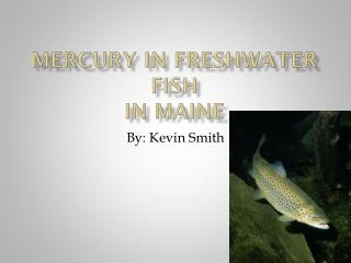 Mercury in Freshwater Fish In Maine
