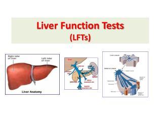 Liver Function Tests (LFTs)