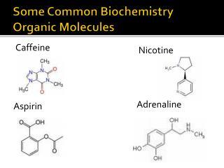 Some Common Biochemistry  Organic Molecules