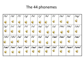 The 44 phonemes
