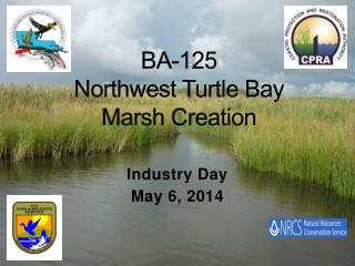 BA-125 Northwest Turtle Bay  Marsh Creation