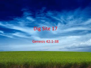 Dig Site 17