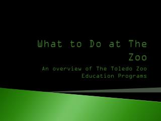 What to Do at The Zoo