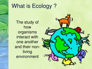 What is Ecology ?