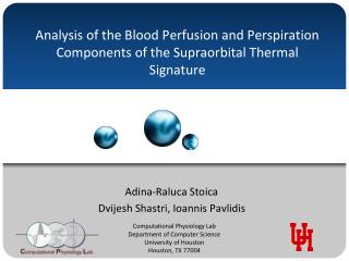 Analysis of the Blood Perfusion and Perspiration Components of the Supraorbital Thermal Signature