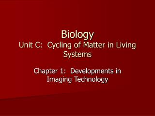 Biology Unit C:  Cycling of Matter in Living Systems