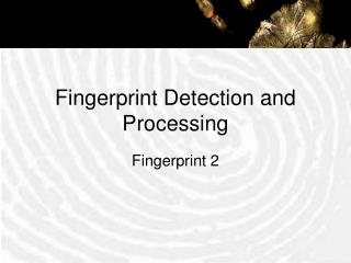 Fingerprint Detection and Processing