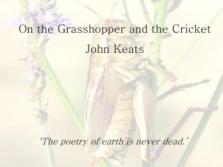 On the Grasshopper and the Cricket John Keats