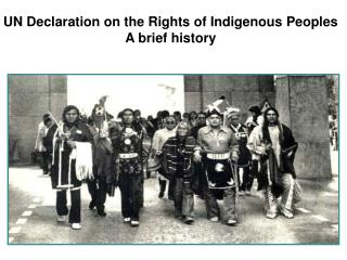 UN Declaration on the Rights of Indigenous Peoples A brief history