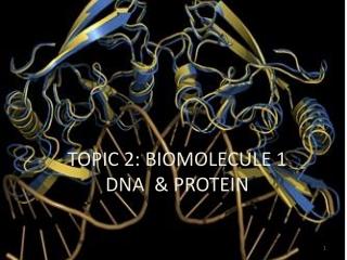 TOPIC 2: BIOMOLECULE 1 DNA & PROTEIN