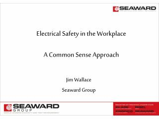 Electrical Safety in the Workplace  A Common Sense Approach
