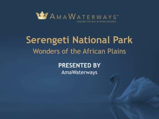 Serengeti National Park - Wonders of the African Plains