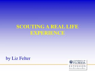 SCOUTING A REAL LIFE EXPERIENCE