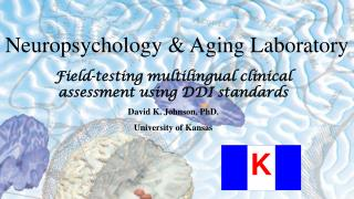 Field-testing multilingual clinical assessment using DDI standards David K. Johnson, PhD.
