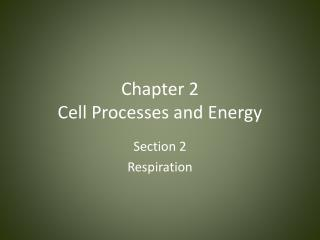 Chapter 2 Cell Processes and Energy