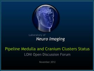 Pipeline Medulla and Cranium Clusters Status LONI Open Discussion Forum November 2012