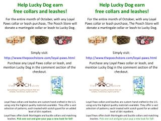 Help Lucky Dog earn f ree collars and leashes!