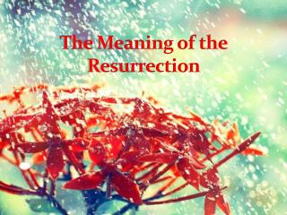 The Meaning of the Resurrection