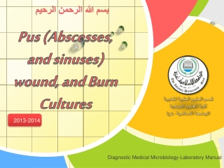 Pus (Abscesses, and sinuses) wound, and Burn Cultures