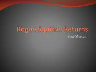 Rogue Squirrel Returns
