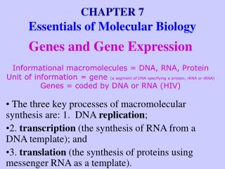 CHAPTER 7 Essentials of Molecular Biology