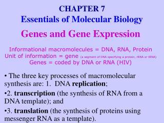 CHAPTER 7 Essentials of Molecular Biology
