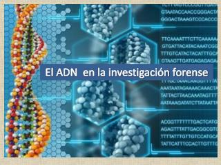 El ADN  en la investigación forense