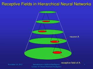Receptive Fields in Hierarchical Neural Networks
